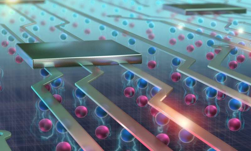 excitons